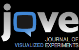 Journal of Visualized Experiments